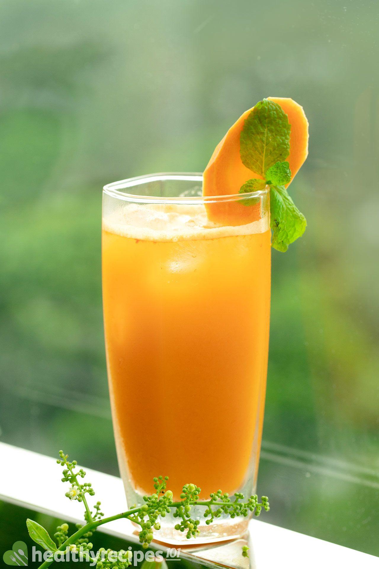 Homemade Carrot Apple Ginger Juice Recipe