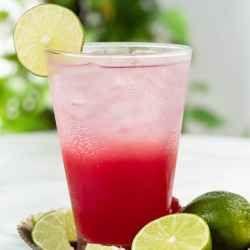 homemade vodka and pomegranate juice