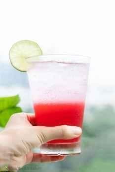 vodka and pomegranate juice recipe