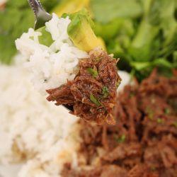 Homemade Instant Pot Shredded Beef Recipe